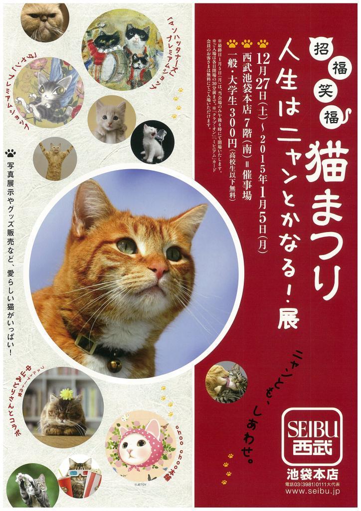 猫まつり1.jpg
