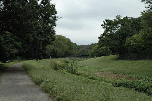 野川公園風景①