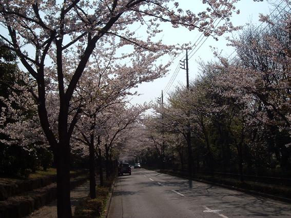 2009春