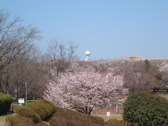 2009春・○
